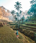 Bali Jadi Pulau Paling Populer di Instagram