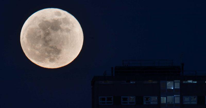 """Bulan Purnama """"Cold Moon"""" Akan Dapat Terlihat dari Indonesia, Catat Tanggalnya!"""