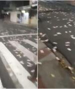 """""""Hujan Uang"""" Terjadi di Brasil, Sumbernya Tak Terduga!"""