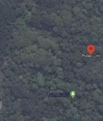 Tanda SOS Muncul Dekat Lokasi Kecelakaan Sriwijaya Sj 182, Kecelakaan Basarnas Tak Temukan Apapun