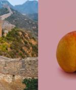 Swab Anal Jadi Syarat Wajib Wisatawan untuk Masuk Negara Cina