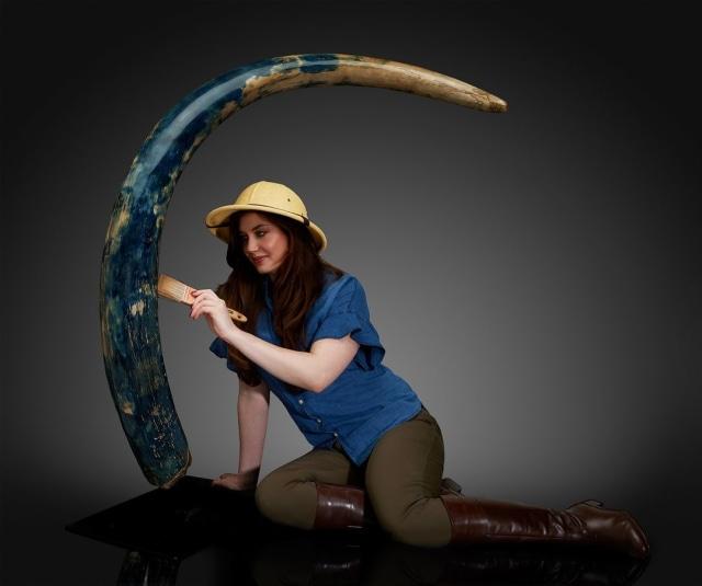 Penemuan Langka Gading Mammoth Berwarna Biru Dilelang