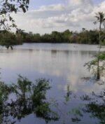 Kemunculan Danau Baru di Kupang Bikin Heboh, Ini Penjelasan Para Ahli Terkait Fenomena Itu!
