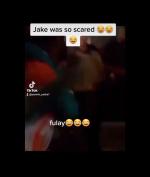Jake Paul Kena Bogem Mayweather Usai Kericuhan Konfrensi Pers, Begini Respon McGregor