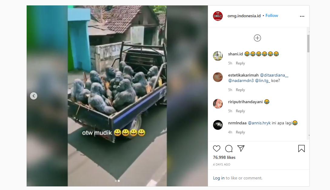 Pemudik Nekat Nyamar Jadi Gorilla Demi Mengakali Petugas Posko Penyekatan