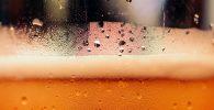 Minum Alkohol Merusak Otak, Meski Sedikit? Berikut Faktanya