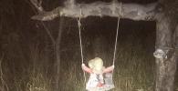 Boneka Berhantu Terror Amerika, yang Mendekati Akan Dapat Nasib Buruk