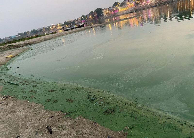 Sungai Gangga Jadi Hijau, Warga India Panik! Apa Penyebabnya?