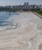 Begini Penampakan 'Ingus Laut' di Laut Marmara, Gara-Gara Perubahan Iklim?