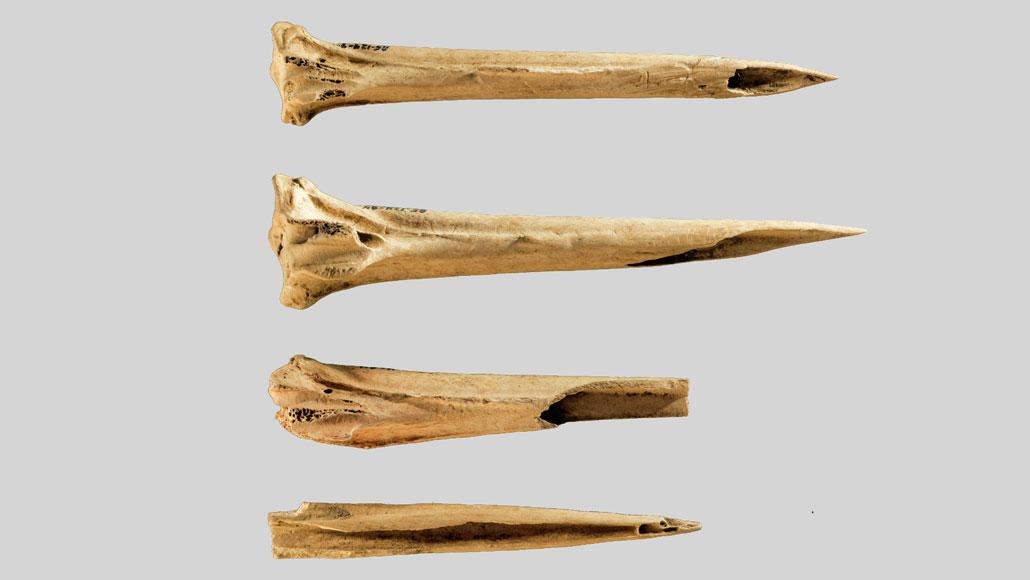 Alat Tato Tertua dari Tulang Kalkun, Ditemukan di Situs Kuno Tennessee!