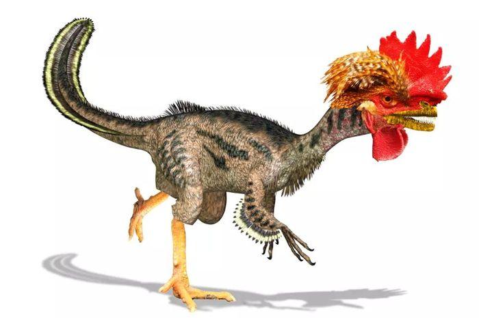 Peneliti Bikin Ayam Berwujud Dinosaurus, Chickenosaurus!