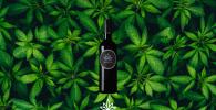 Wine Ganja Berhasil Diciptakan!