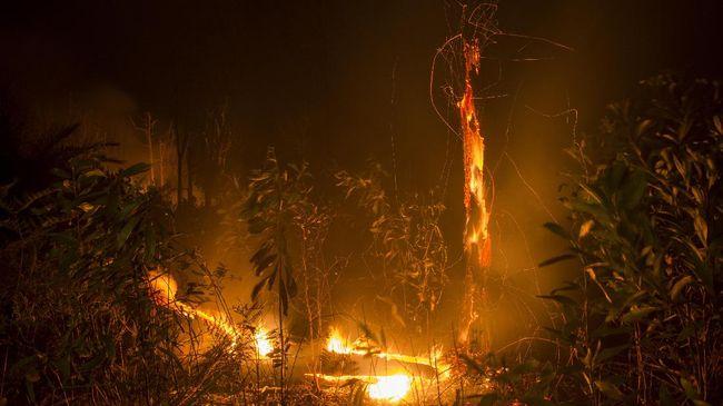 Gunung Lewotolok sebabkan kebakaran hutan