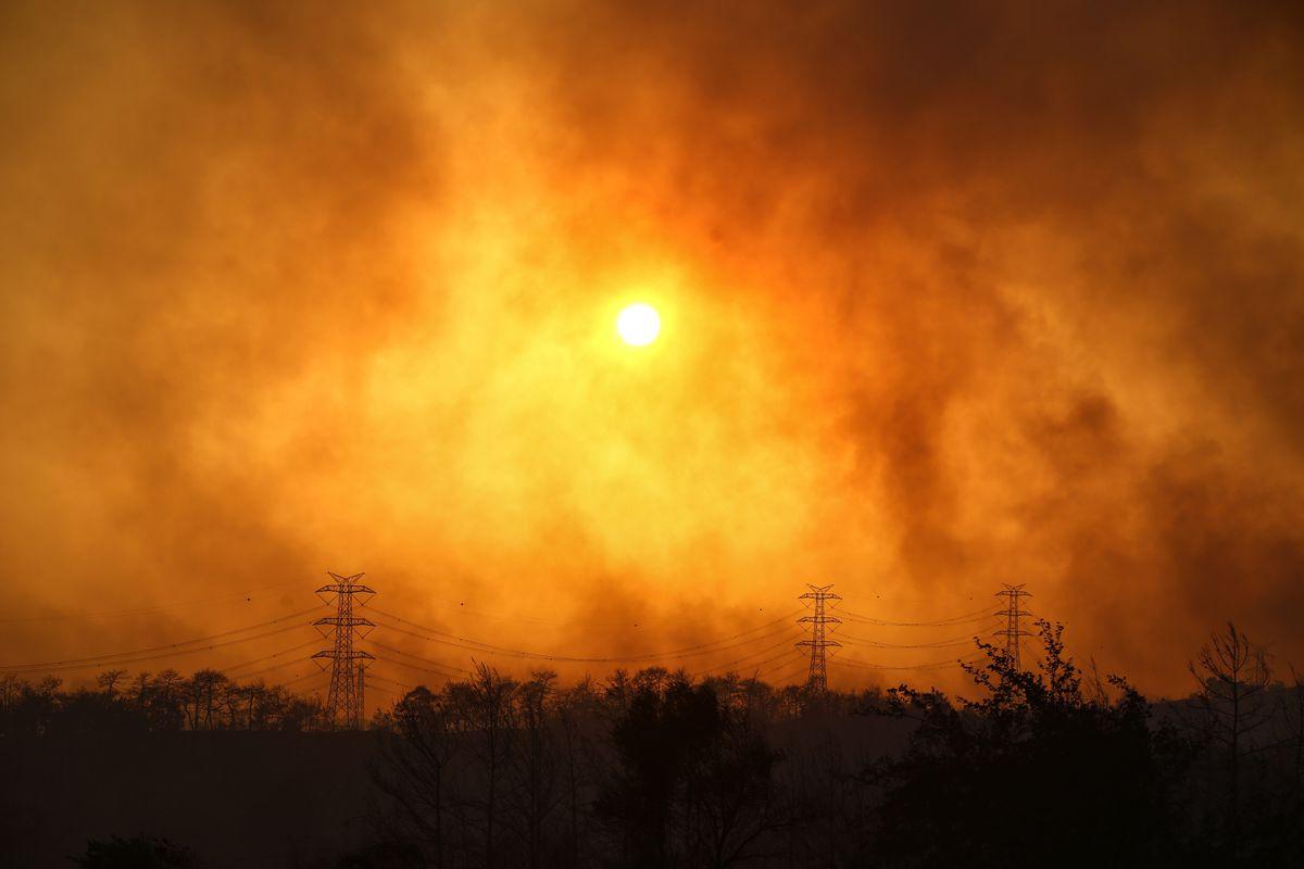 Kebakaran Hutan di Pesisir Turki Memakan Korban, #PrayForTurkey