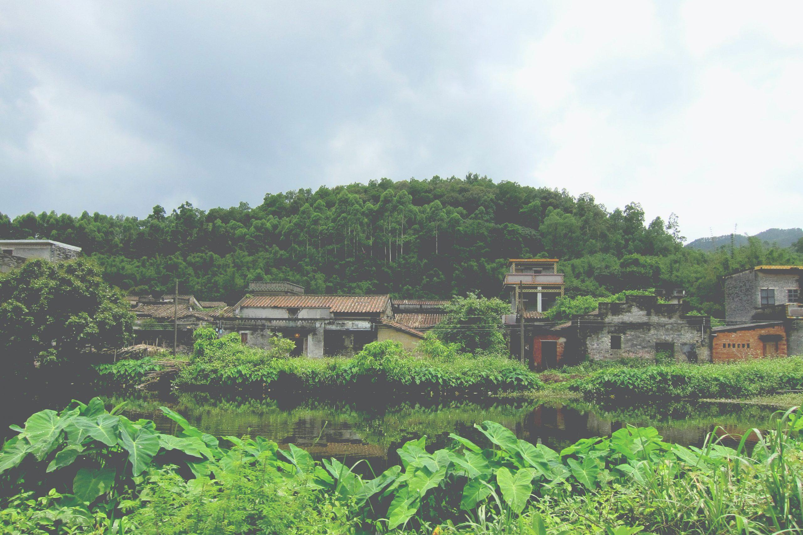 Desa Miskin Berhasil Raih 172 Miliar Pertahun, Ini Pekerjaan Tak Biasa Para Warga