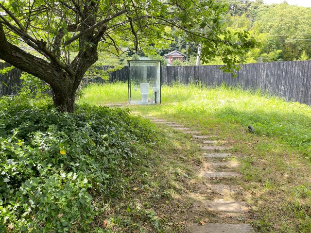 Jepang Punya Toilet Paling Luas di Dunia, Begini Wujudnya!