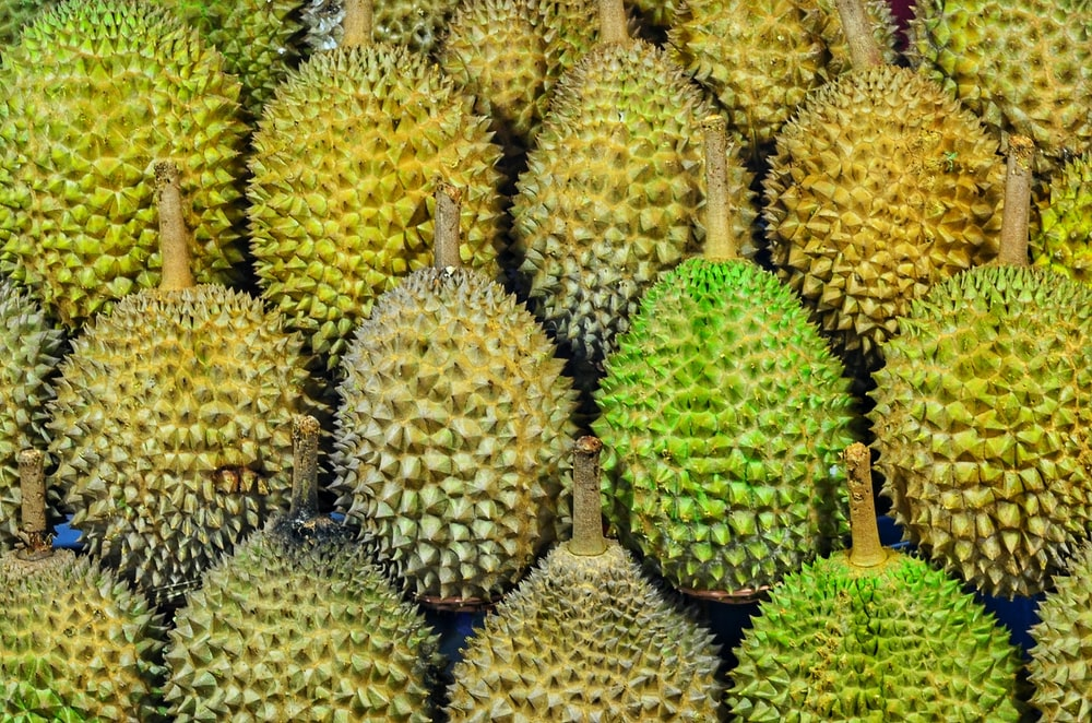 Ditemukan di paket durian asal Thailand