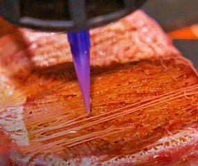 Ilmuwan Jepang Bikin Daging Wagyu dengan Teknologi Cetak 3D, Gimana Rasanya?