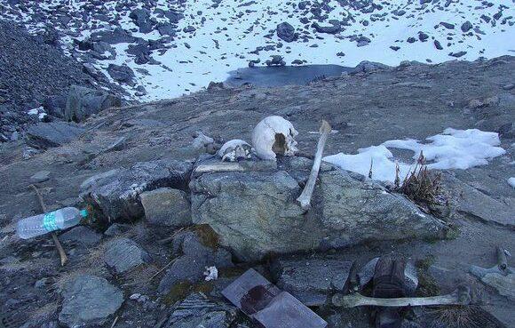 Ratusan Tulang Tengkorak Tak Beridentitas Ditemukan di Danau Ini