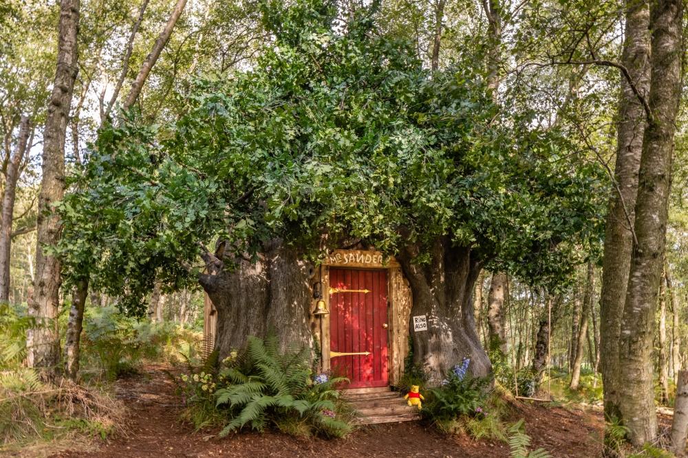 Disney Kolaborasi dengan Airbnb, Ciptakan Rumah yang Terinspirasi dari Winnie the Pooh
