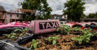 Taksi Thailand Berubah Jadi Kebun Sayuran, Protes Pandemi Covid-19?