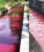 Sungai di Klaten Mendadak Jadi Warna Merah, Apa Penyebabnya?
