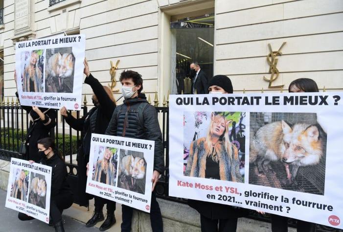 Yves Saint Laurent, Gucci, Balenciaga, Berhenti Pakai Bulu Binatang, Begini Kata CEO Kering