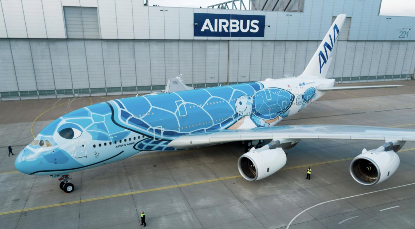 Kura-Kura Ini Bikin 5 Penerbangan Bandara Jepang Delay, Begini Ceritanya!