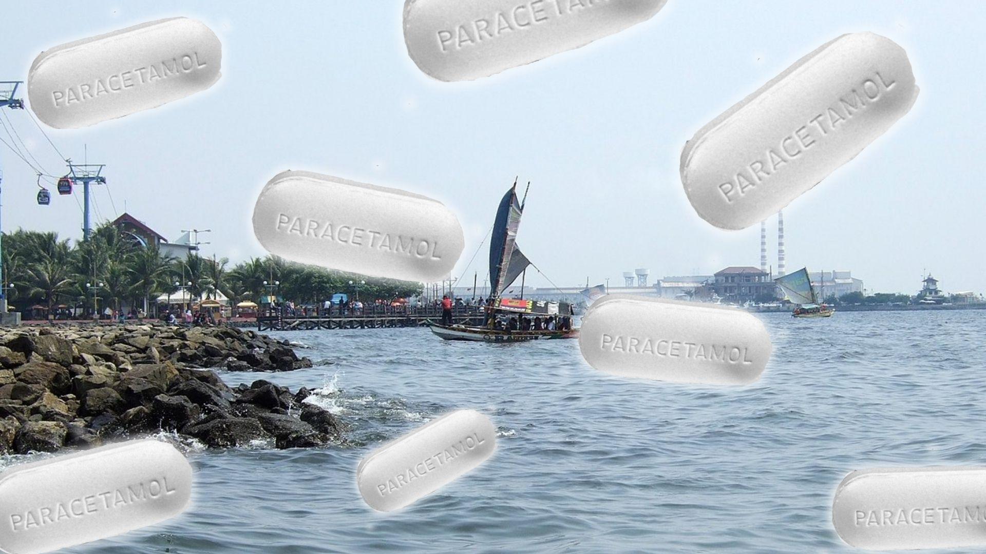 Teluk Jakarta Tercemar Paracetamol, Begini Kata Penelitian!