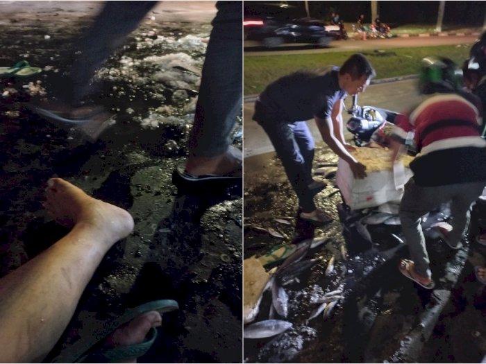 Mobil Pajero Tabrak Lari Pedagang Ikan Di PIK, Begini Ceritanya!